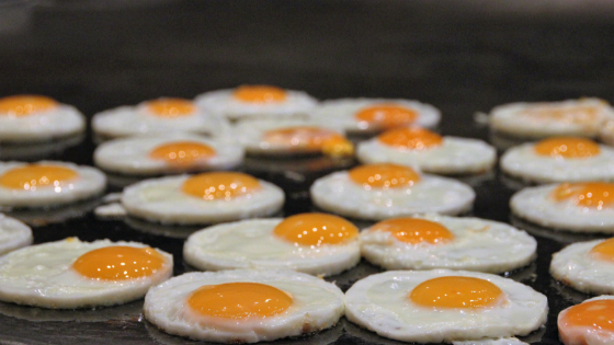 Eggs Cooking on a Stove